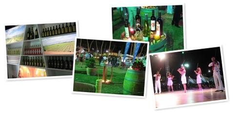 Vinifest 2009 (0)