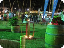 Vinifest 2009 (5)