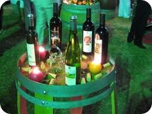 Vinifest 2009 (8)