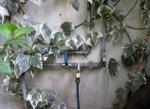 faucet Hamra
